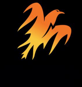 Wellington Firebirds